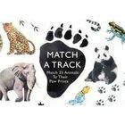 Match a Track - Animal Paw Print Matching Card Game