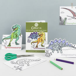 Eggnogg Colour in Card Book - Pop up Dinosaurs