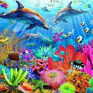 Dolphin Coral Reef 1000 Piece Puzzle additional 1